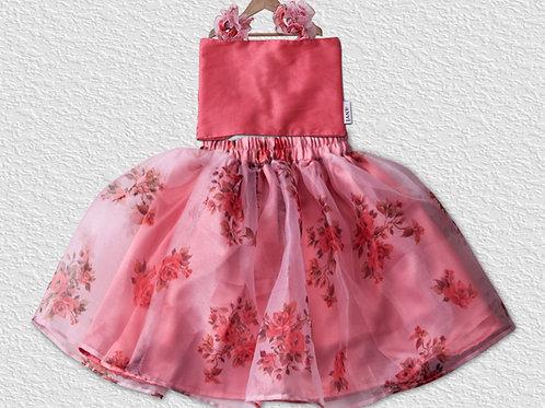 Peach organza skirt and silk top for Girls
