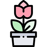 vaso-de-plantas.png