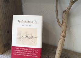 11/28(土)「やわらかくひろげる vol.2 ハンセン病文学を読む」読書会最終回!