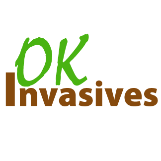 OK Invasives | Learn more about invasive species in Oklahoma