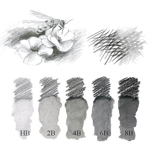Grafit Akvarel Kunstnerblyanter