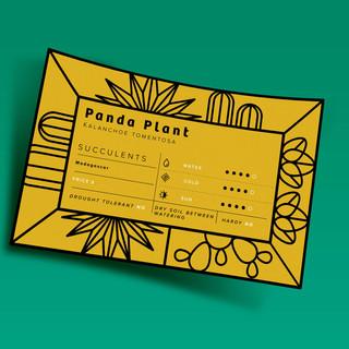 card_thumb.jpg