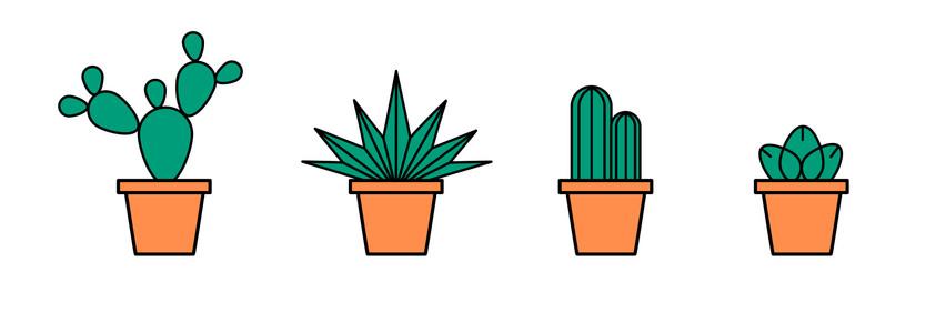 plants_-10-10.jpg