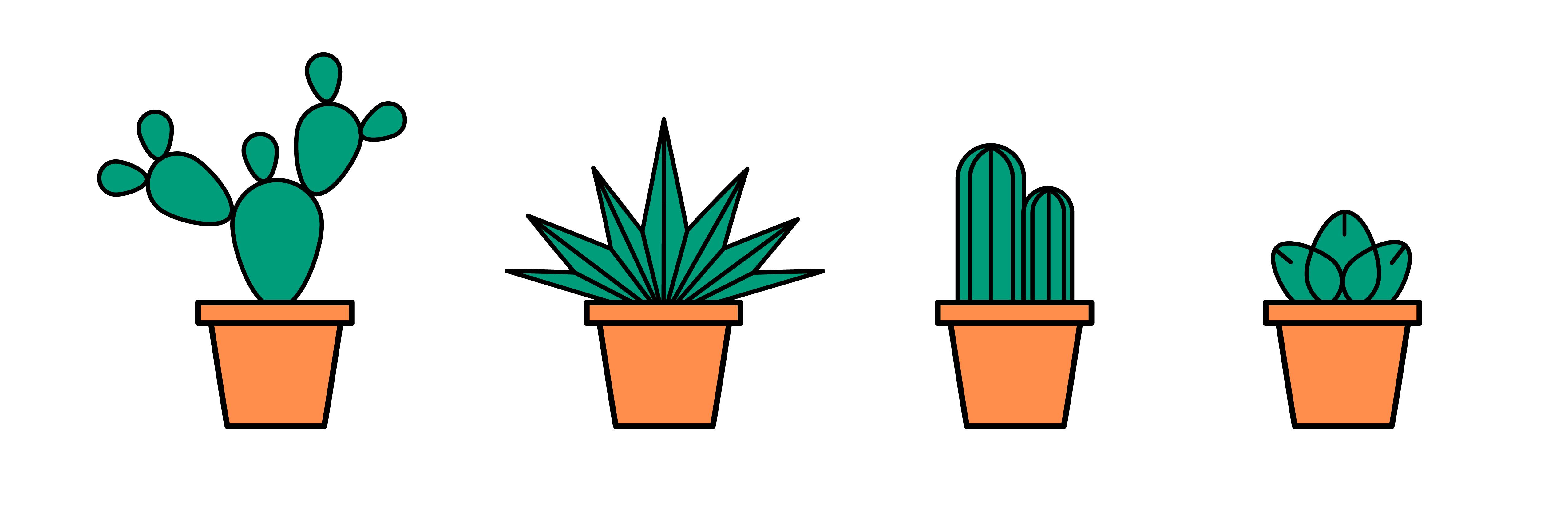 plants_-10-10
