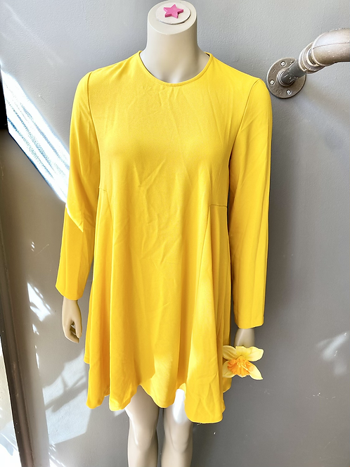 Zara Swing Mini Dress