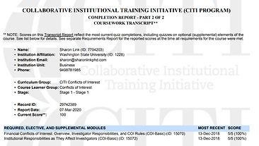CITI Report.jpg