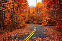 Fall in he Poconos