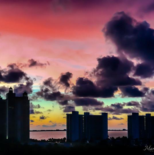 Sarasota-Views--21.jpg