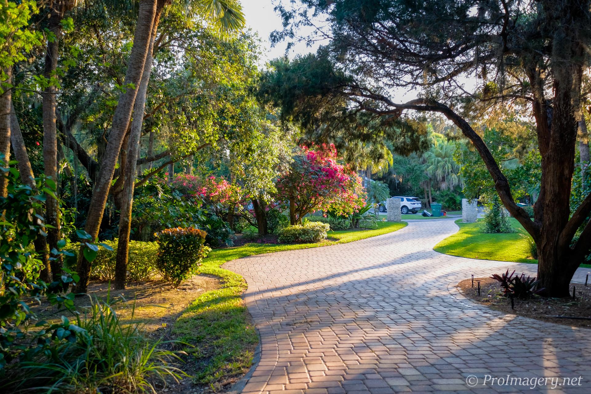 1321-Point-Crisp-Road-Sarasota-Driveway-