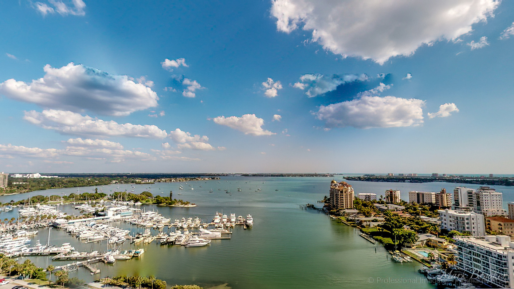 Sarasota-Views--30.jpg