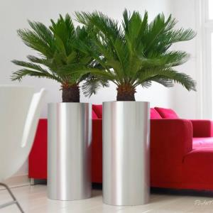 Cylindrical metal office plant pot