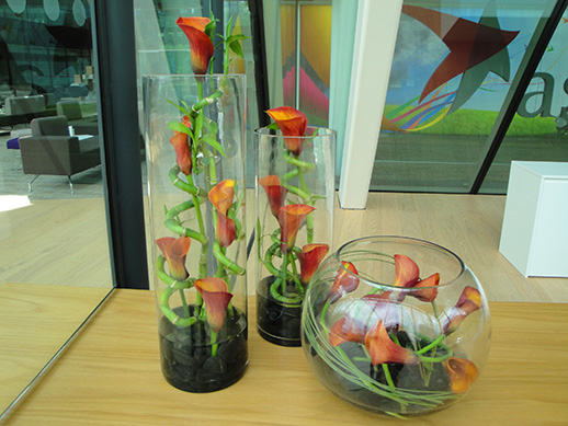 weekly office flower displays