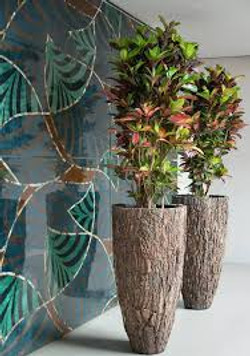 natural office plant displays