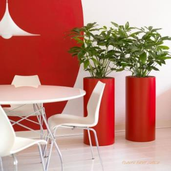 Red Office Plant Pots
