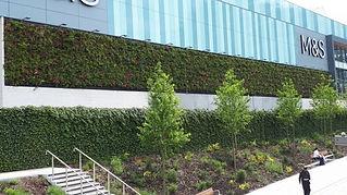 Bracknell Living Wall.jpg
