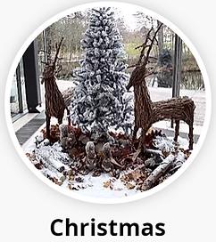 Office Christmas Rental