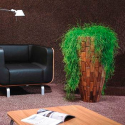 Hanging office plant in wooden pot