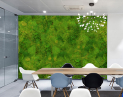Moss wall covering office