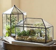 Terrariums for offices