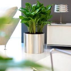 low metal plant pot