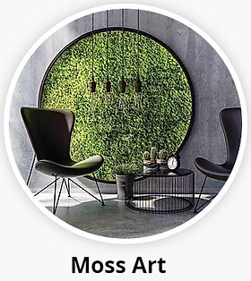 Moss Art for Offices