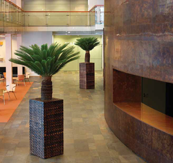 Luxury wooded plant pot in office