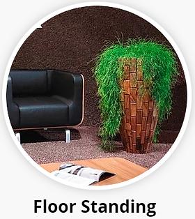 Office Plant Displays