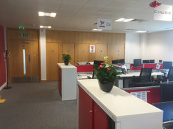 Flowering plants for offices