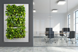 Living Panel for offices