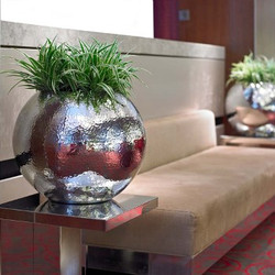 Office Plant in metal bowl