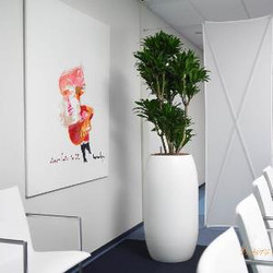 Round Office Plant Pot