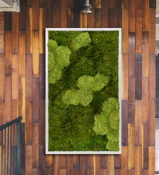Moss Art 9.png