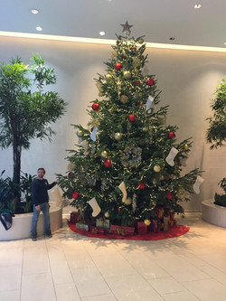 tall office christmas tree rental
