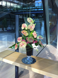 Commercial Building office flowers