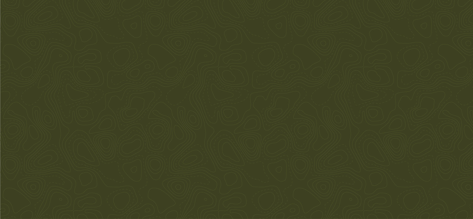 Dark Green Background-01.jpg