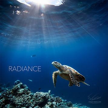 Radiance artwork