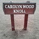 Carolyn Wood Sign_edited.jpg