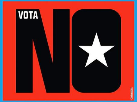 Top 5 Reasons to Support NO from the Diaspora