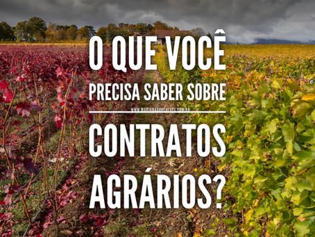 O que você precisa saber sobre contratos agrários?