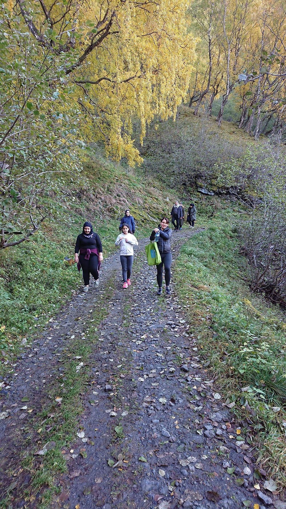 På tur oppover bakkene til broene ved Leim