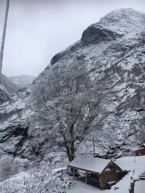 Grindbygg, alm, vinter 3.jpg