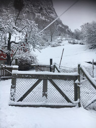 Grind med snø.jpg