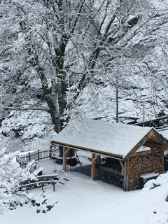 Grindbygg, alm, vinter 2.jpg