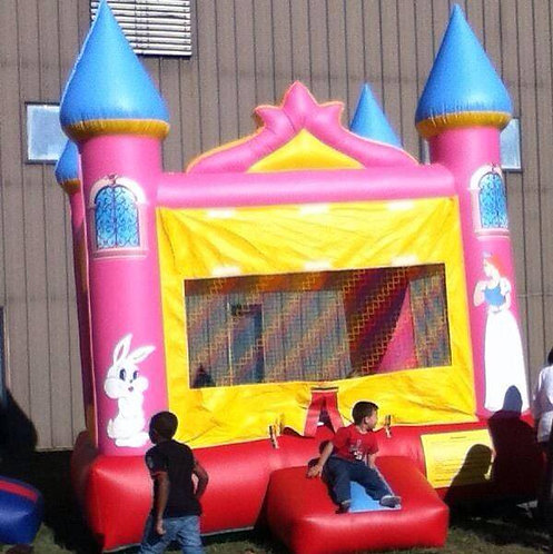 13x13 Princess Bounce House