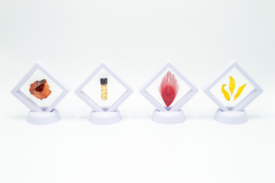 South, 2020. Carnelian, gold, peacock (feather), and sunflower (petals).