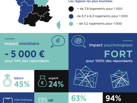 Infographie homeus : Les cambriolages en France
