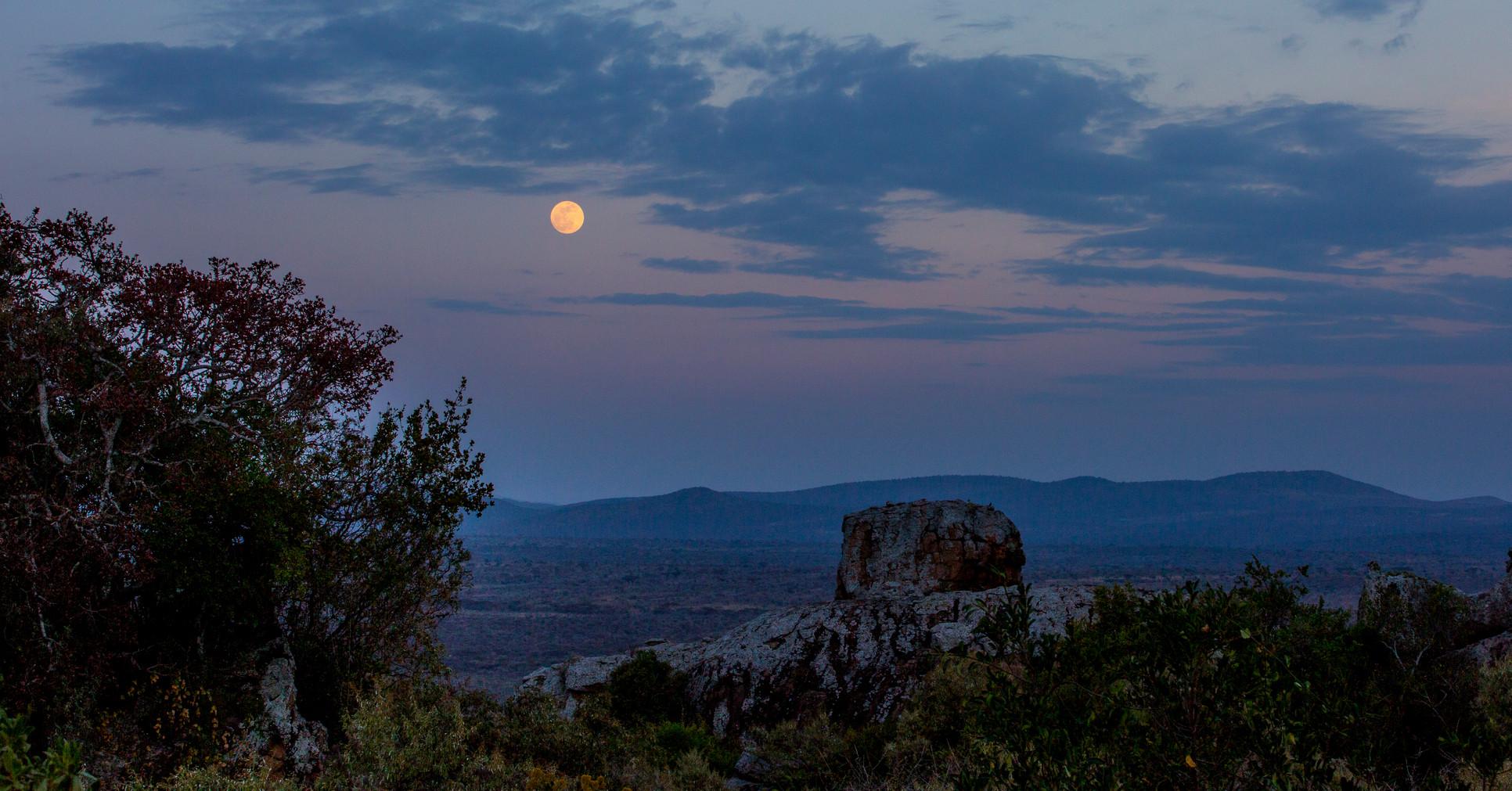 Moon Rise .jpg