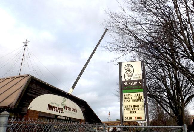 Crane signs star