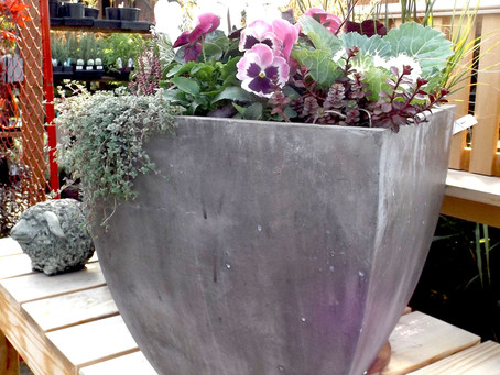 Pot-Lite Planters Are Ideal for Rooftop and Balcony Gardens
