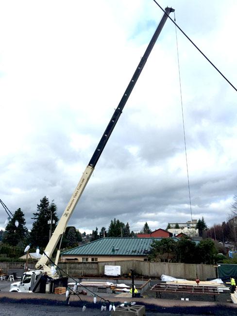 Crane full size